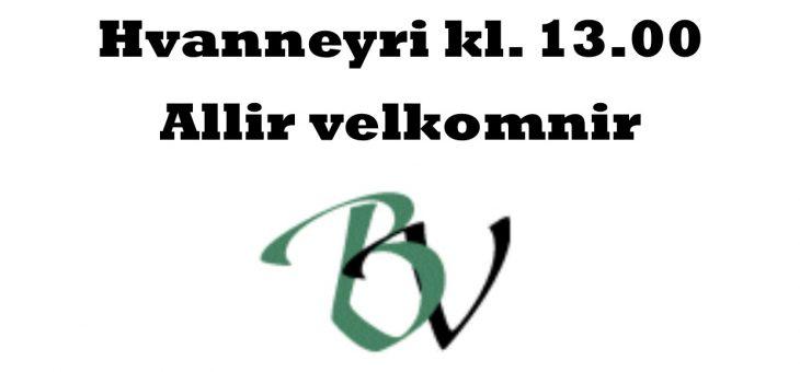 Aðalfundur BV 9. apríl kl. 13.00